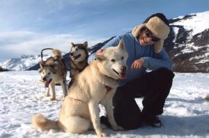 Chiens de traîneau – Dog sledding – Катание на собачьих упряжках